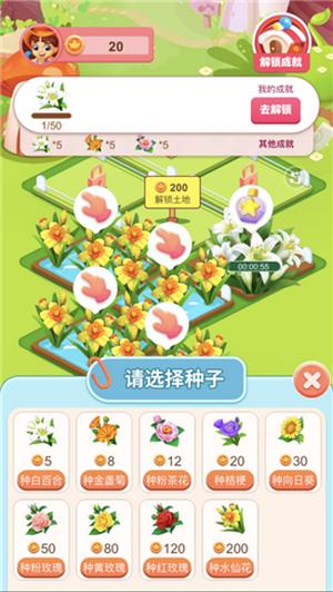 开心花园正版